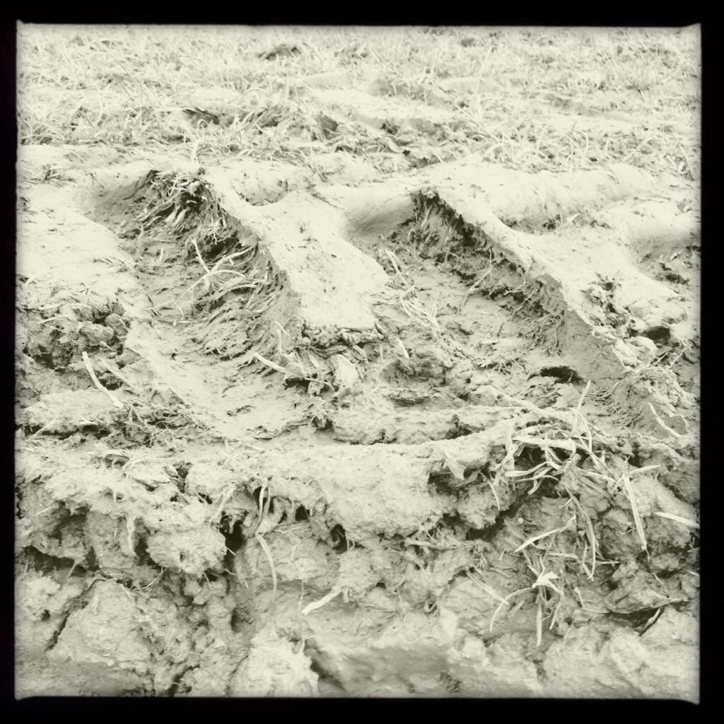 Passage of Mucus in the Stool von Heik Moorlander. MudArt