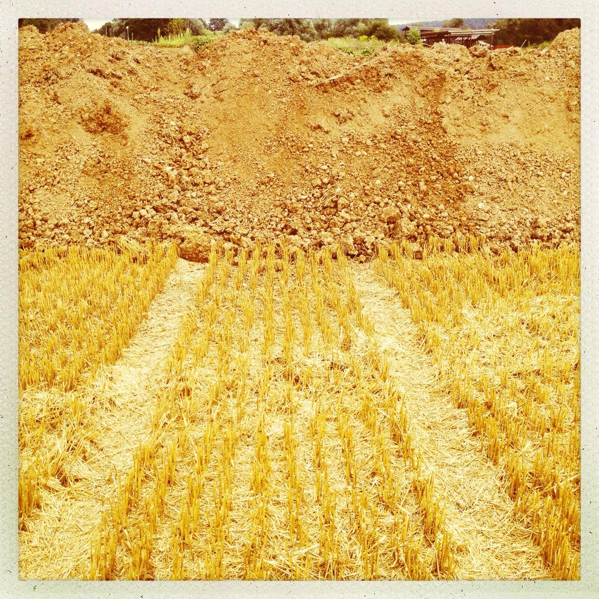 Traktorspur in einem Stopelfeld, auf einen Erdwall zuführend. Quadratische Hipstamatic Aufnahme, gelb, rötlich, erdig, ockerfarben.