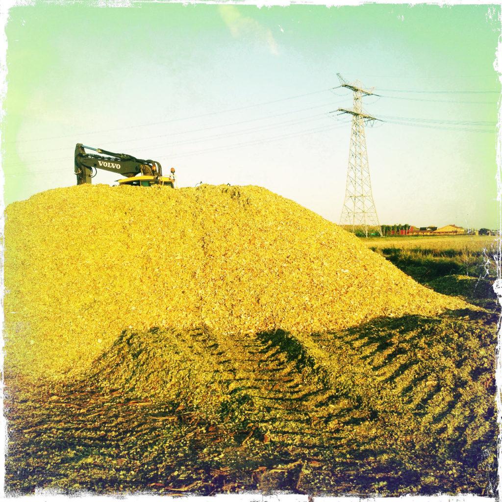 Silage-Haufen, auf den eine Traktorspur zuführt. Gelblich grünes Bild, quadratisch. im Hintergrund versteckt ein Bagger-Arm.