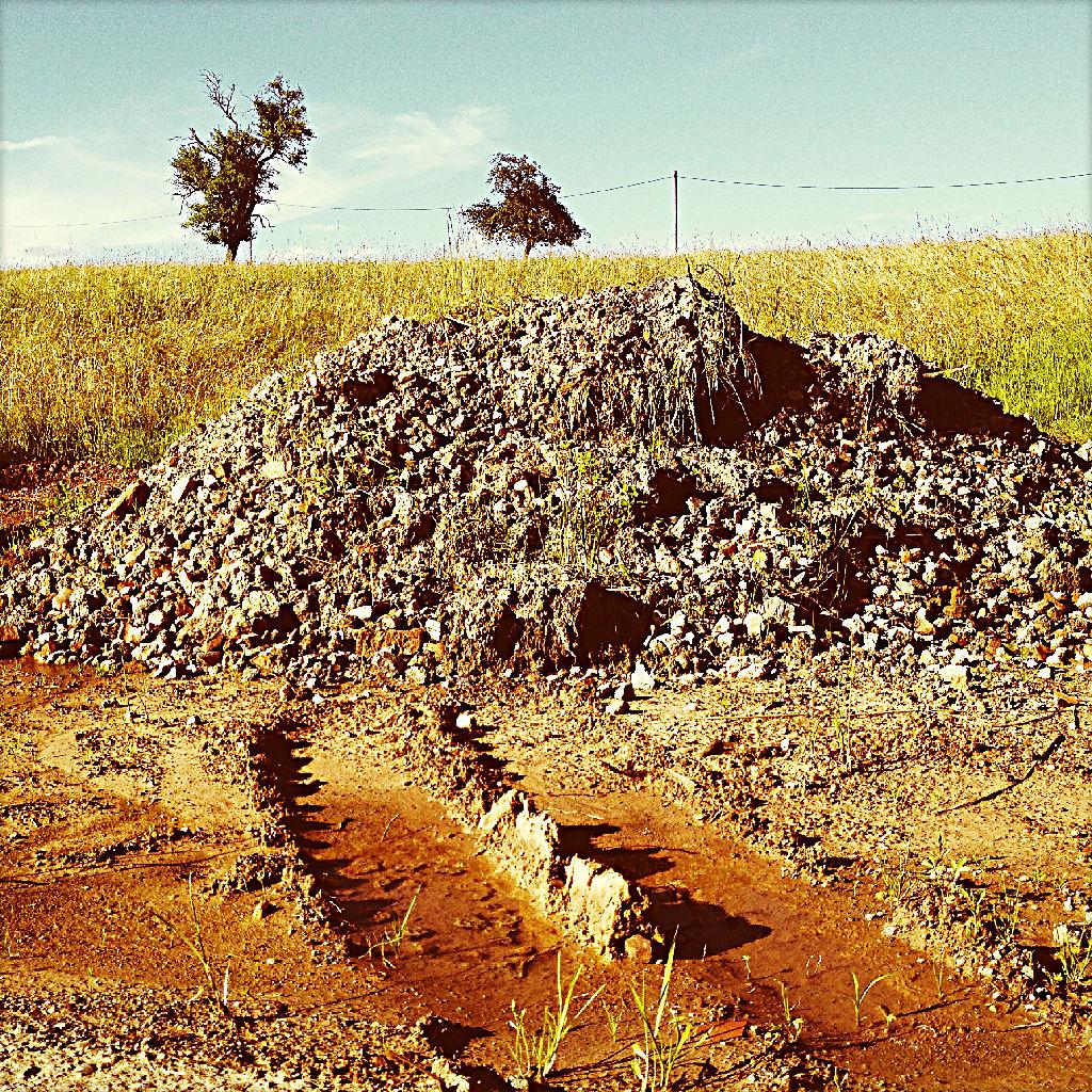 Eine verwaschene, rötlich braune LKW-Spur führt auf einen Kieshügel zu. Dahinter am Horizont zwei Bäume.