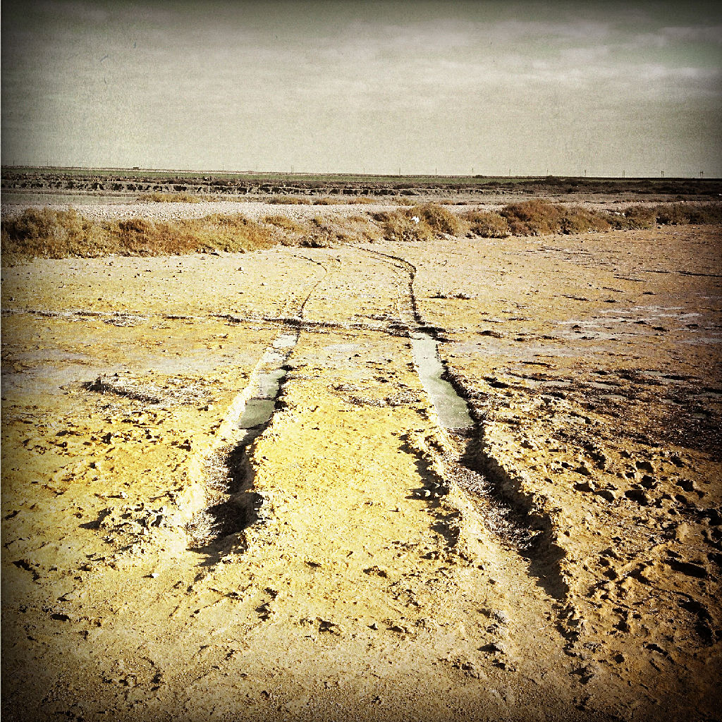 Ein bräunliches Bild einer Marschlandschaft, durch die eine tiefe Schlammspur Richtung Horizont zieht.