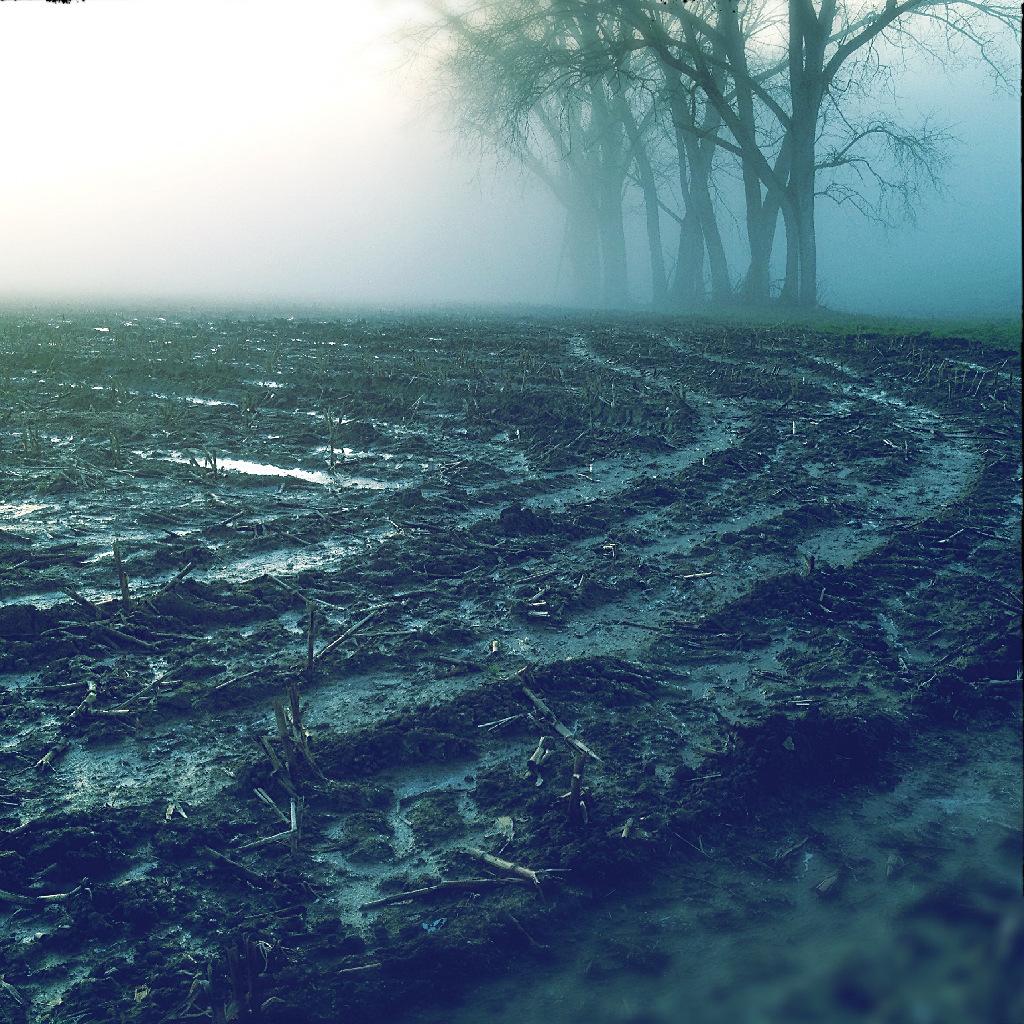 Zwei Drittel matschige, abschüssige Ackerfläche vor im Nebel versinkenden Pappeln. Eine blassblaue Spur wässrigen Untergrunds schlängelt sich zum Horizont