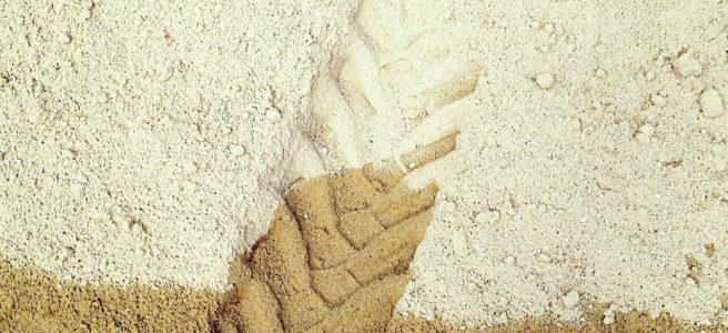 das untere Zehntel des Bilds zeigt eine Teeroberfläche, auf der ein gelblicher Sandhaufen liegt. Die Spur eines Gabelstaplers drückt sich im feuchten Sand ab.