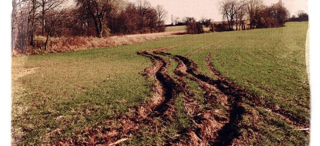 Tiefe Schlammspur auf junggrünem Acker weicht kurvig aus einer weniger Tiefen Spur nach links aus. Im Hintergrund ein Windrad.